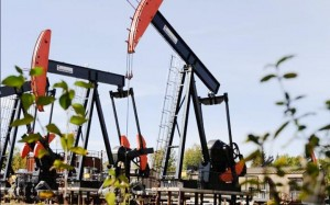 Shell's pump jacks draw oil from 600 metres underground as part of its steam-assisted in situ oil recovery project near Peace River. An expansion project for the site was recently approved.