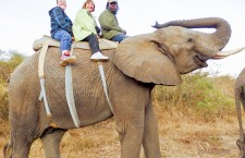 """The """"Elephant Whisperer"""" takes Marten and Evans for the ride of a lifetime in Zimbabwe."""