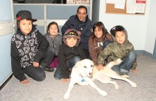 Paddy Cakes is one popular pup, with fans from Behchoko to Sachs Harbour.