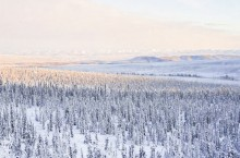Gwich'in First Nations are asking for more time to review a drilling proposal just west of the Yukon-NWT border.