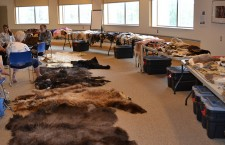 Fort Smith elder shares extensive fur collection at Prince of Wales